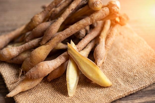 Kaempfer root food herbal medicine nature fingerroot chinese ginger, galingale, kaempfer