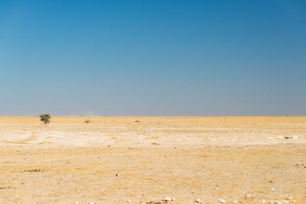 カラハリ砂漠、空の平野、晴天、ボツワナのロードトリップ、アフリカの旅行先