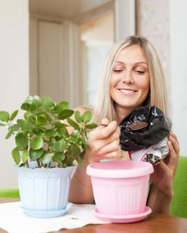 女性移植kalanchoe植物