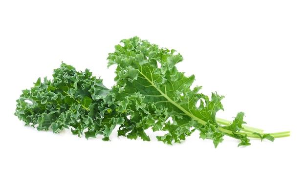 케일 잎 샐러드 야채 흰색 배경에 고립