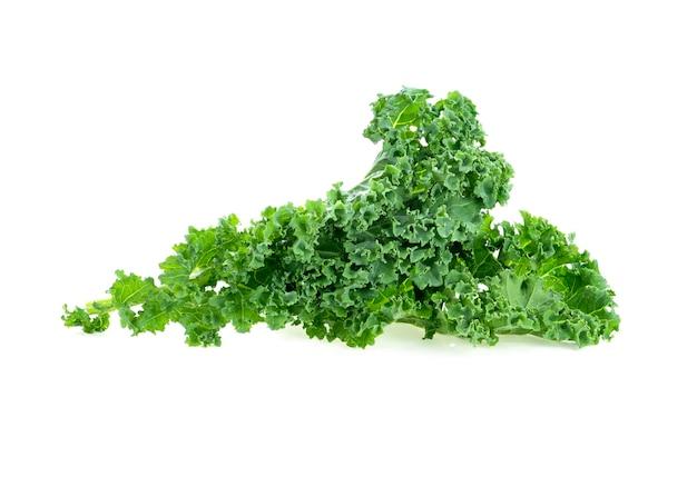 케일 잎 샐러드 야채 흰색 절연