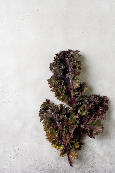 Kale leaves fresh green curly on a cutting board on a light gray slate, stone or concrete surface