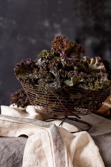 Kale leaves fresh green curly in a metal vintage basket on an old wooden background