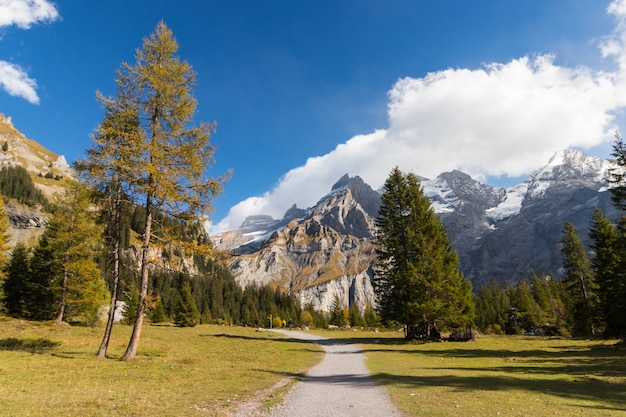 Kandersteg valley with green grass and mountain in switzerland