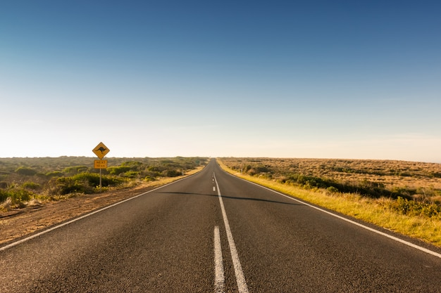 Kangaroo crossing road sign