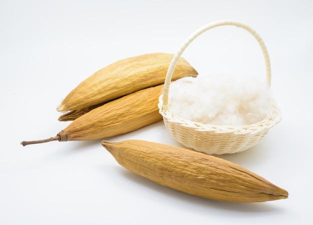 Kapok seeds with white fiber for making pillow