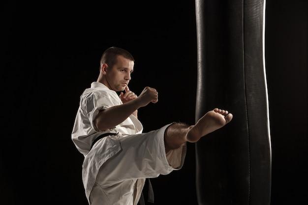Каратэ круглый удар в боксерской груше