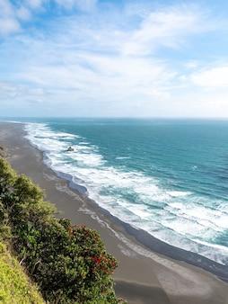 Albero di pohutukawa della spiaggia di karekare in primo piano Foto Gratuite