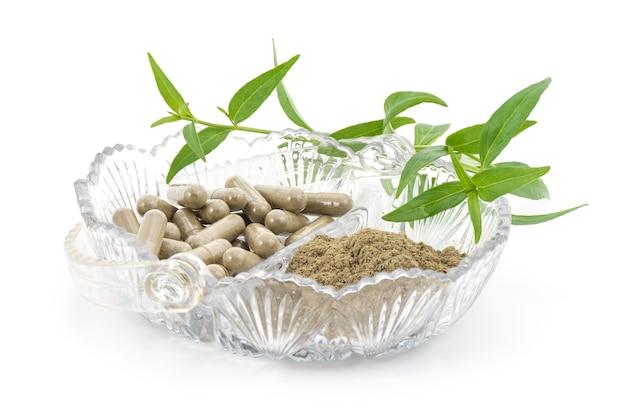 Kariyatまたはandrographispaniculataの粉末をカプセルに入れ、緑の葉を白で分離します。
