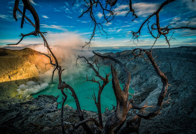 Kawah ijen volcano with dead trees on blue sky background in java, indonesia.
