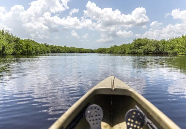 Kayaking in a river in natural landscape