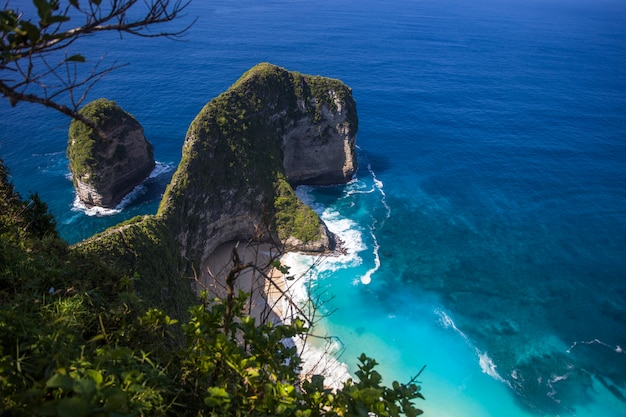 Kelingking beach on the island of nusa penida in indonesia