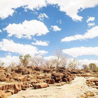 ケニア、ツァボイースト国立公園。素晴らしい青い空とサバンナの真ん中にある小道