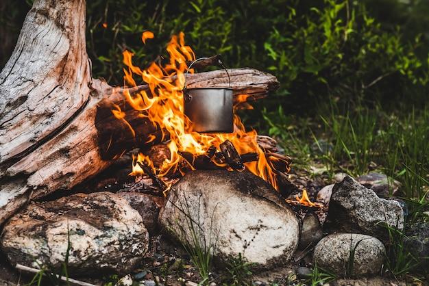 火にぶら下がっているやかん。野生の火で食べ物を調理します。焚き火のクローズアップで美しい大きな丸太が燃えます。野生の自然の中での生存。大釜で素晴らしい炎。鍋が炎にぶら下がっています。キャンプファイヤーの背景。