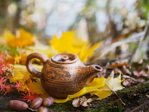 Kettle in the park in autumn foliage and acorns