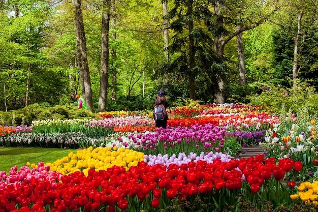 キューケンホフ、オランダ-2017年4月:オランダ、アムステルダム地域の春の花キューケンホフ公園の訪問者。