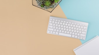 Keyboard with notebook and plant