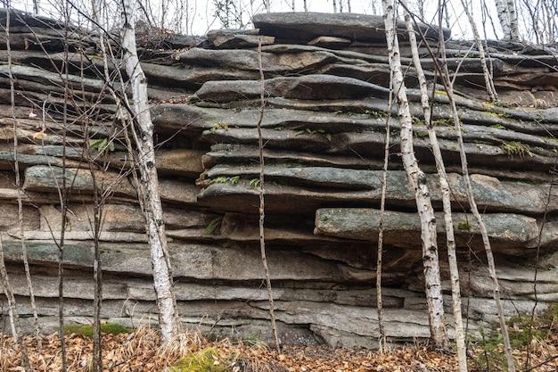 Khabarovsk territory. rocks nadge. anyu river. beautiful rocky grey textured background