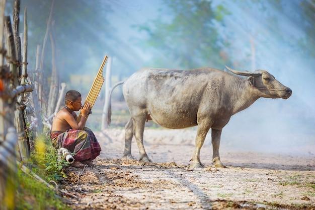 少年がkheneタイの楽器を演奏しています、ラオのオルガン、通常は竹製です。