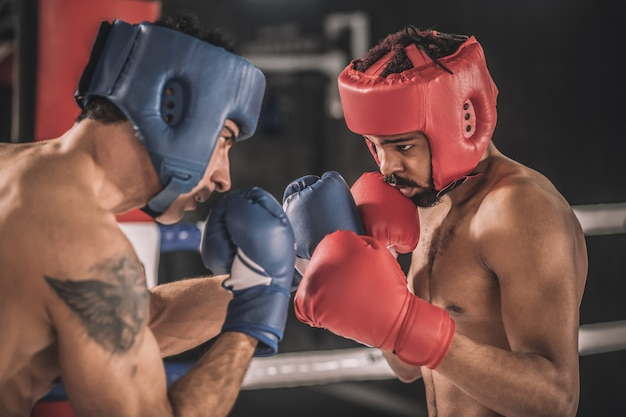 Kickboxing kickboxers in protective hemlets fighting and looking determined