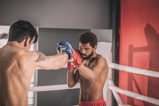 Kickboxing. two young kickboxers having a workout and looking involved