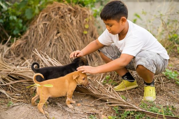Малыш мальчик играет с бездомными щенками