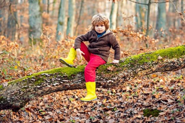 Kid boy walking in the autumn park warm sunny weather