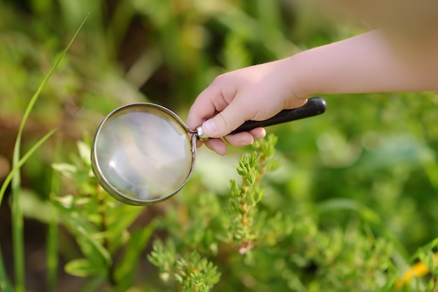 Kid exploring nature with magnifying glass. close up.