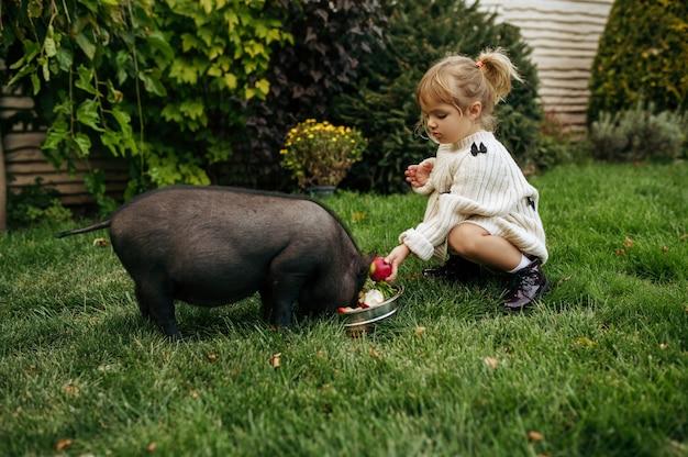 Малыш кормит черную свинью в саду, ухаживает за животными. ребенок с поросенок позирует на заднем дворе. счастливое детство
