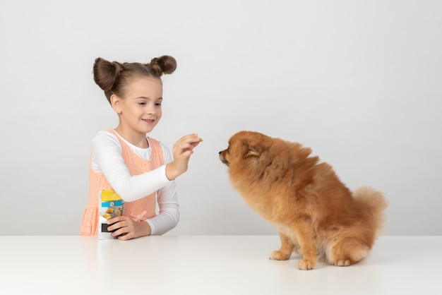 Kid girl giving a dog treat to a spitz