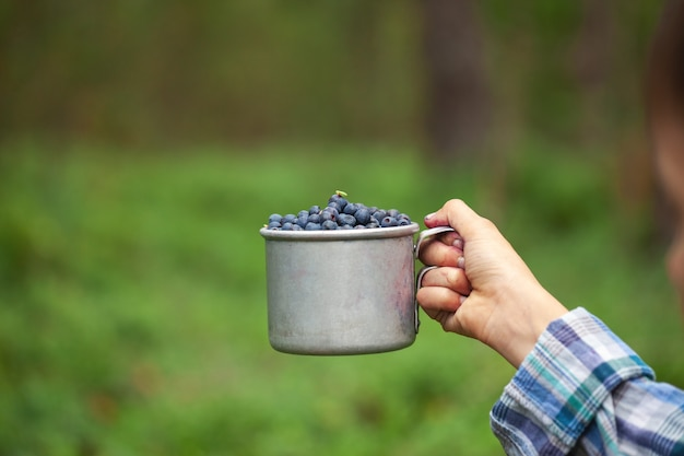 Kid hand holding bowl cup of freshly picked wild blueberries against bokeh green forest background