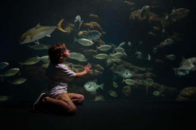 수중 동물원에서 물고기를 보는 아이
