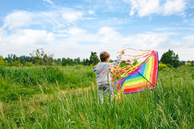 Kid playing colorful kite outdoor at summer meadow or park