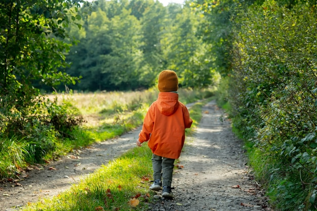 Kid walking on a road next to forest in autumn