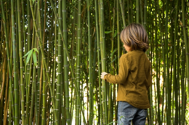 Kid walking through a bamboo forest