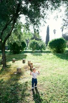 아이가 그루터기의 배경과 나무를 배경으로 청소를 안내합니다.