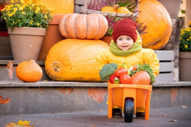 Kid in a yellow overalls drives toy car filled with vegetables among large pumpkins at fall fair.