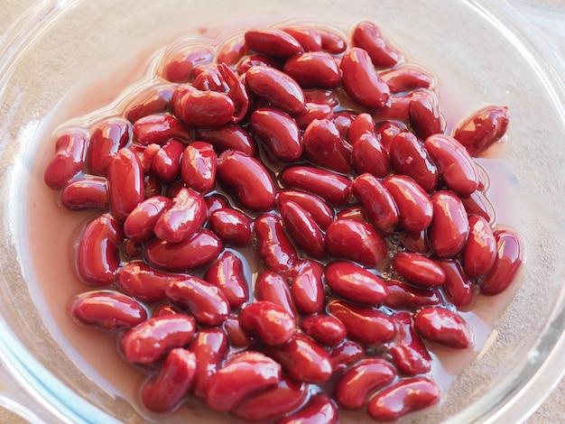 インゲンマメ豆類野菜食品
