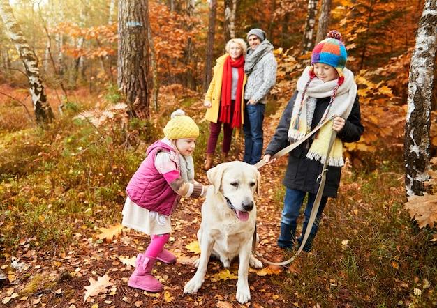 秋の森のひもにつないで子供と犬