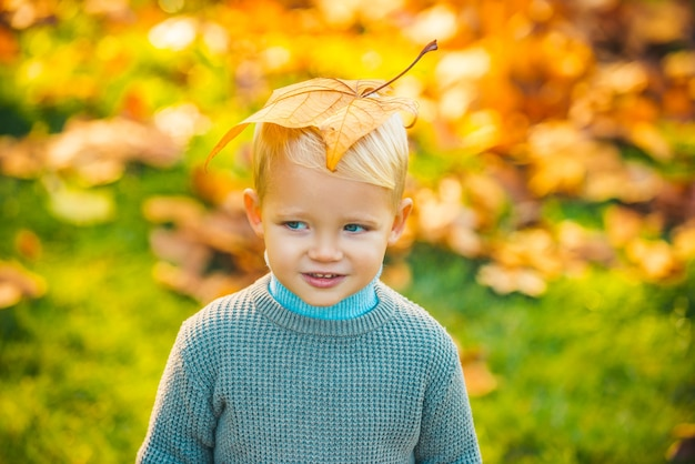 Kids in autumn park on yellow leaf background.