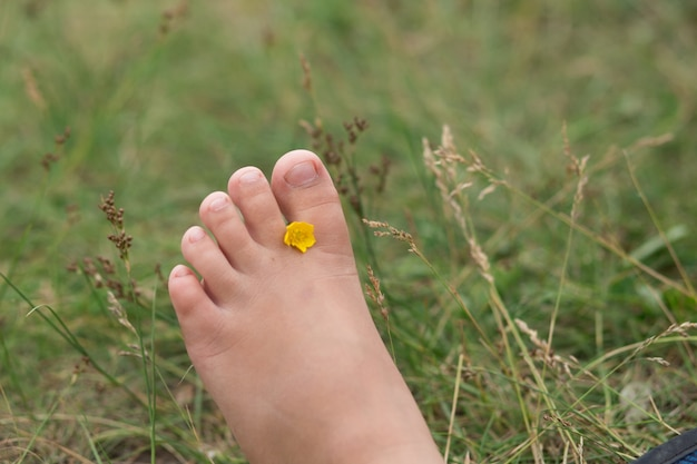 Kids bare feet with yellow flower on the grass
