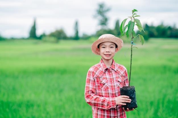 유기농 정원 농지에 나무를 심기 위해 오렌지 나무의 파종을 들고 있는 어린이 소년