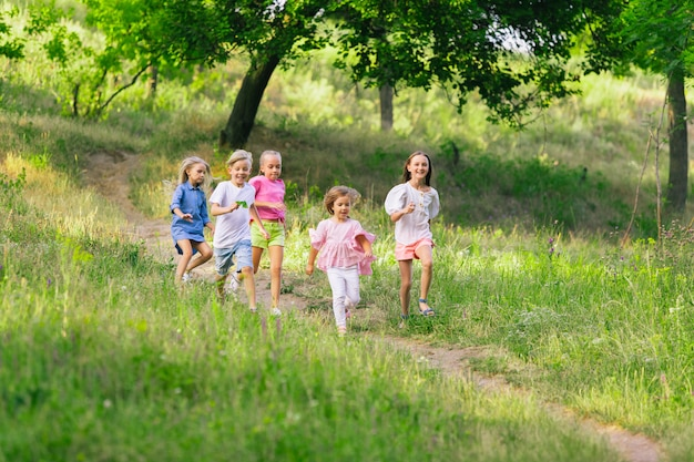 Kids, children running on meadow in summer's sunlight.