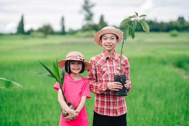 유기농 정원 농지에 나무를 심기 위해 오렌지 나무를 심는 어린이 가족