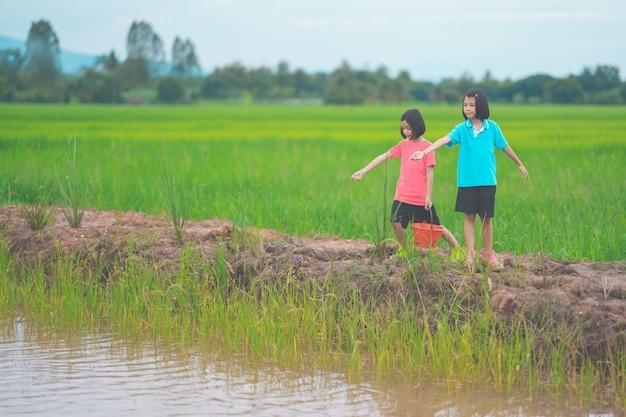 물고기에게 먹이를 주고 라룰에서 정원을 걷는 아이들