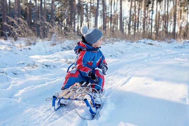 冬の雪の森でスレッジに乗って楽しんでいる子供たちは、季節のアウトドアアクティビティを楽しんでいます