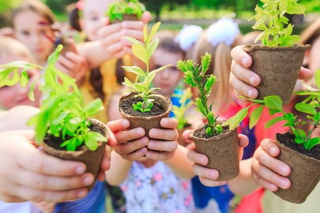 植木鉢に植物を保持している子供