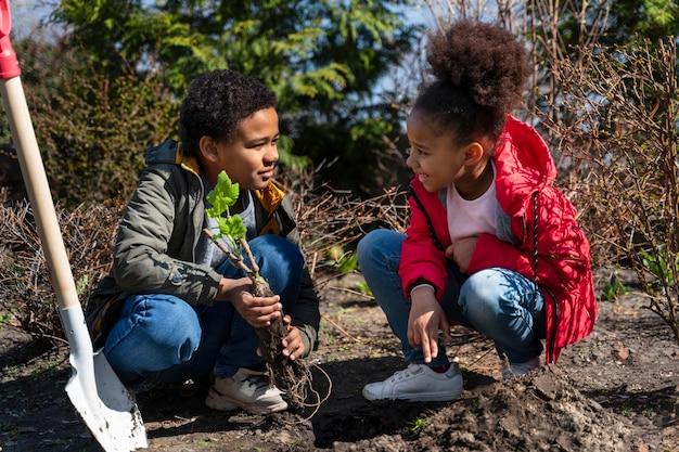 Bambini che imparano a piantare un albero
