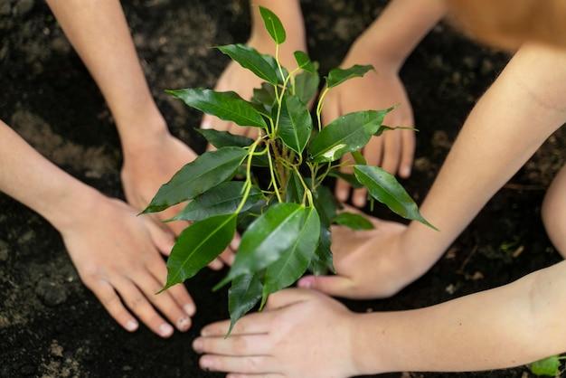 숲에서 함께 심는 아이들