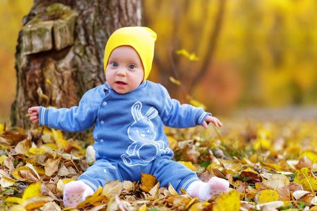 子供たちは秋の公園で遊ぶ